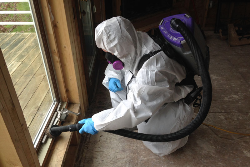 black mold remediation company Werner Restoration Services of Colona, IL