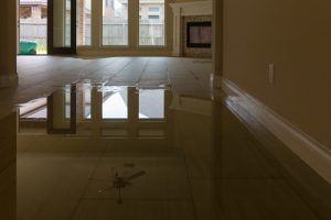 water damage and water removal services